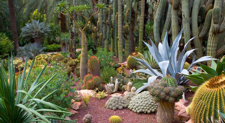 Culture art de vivre quirosimo for Que es un jardin ornamental